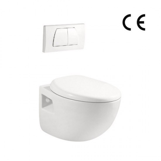 Wall hung toilet AN5912