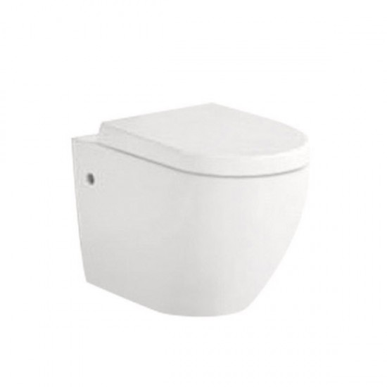 Wall Hung Toilet AN5915